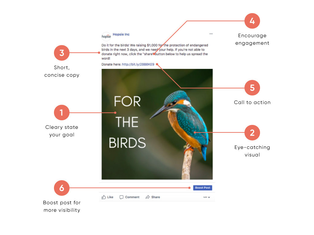 The Anatomy Of A Perfect Facebook Post Hopsie